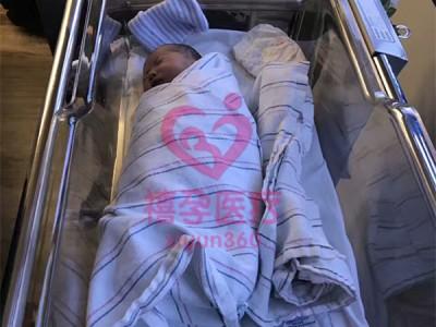 试管婴儿小圆桌——输卵管堵塞试管方案是什么?