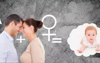 通过哪些性爱生活,可提高备孕期间怀孕率吗?